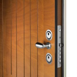 двери входные популярные